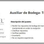 Recluta: Excel Automotriz