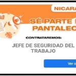 Recluta:pantaleon.com